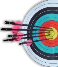 Archery ten ring or bullseye