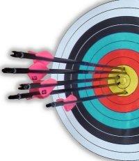 Archery ten ring or bullseye